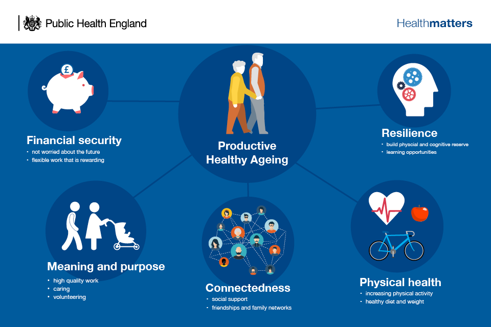 Infographic explaining productive healthy ageing
