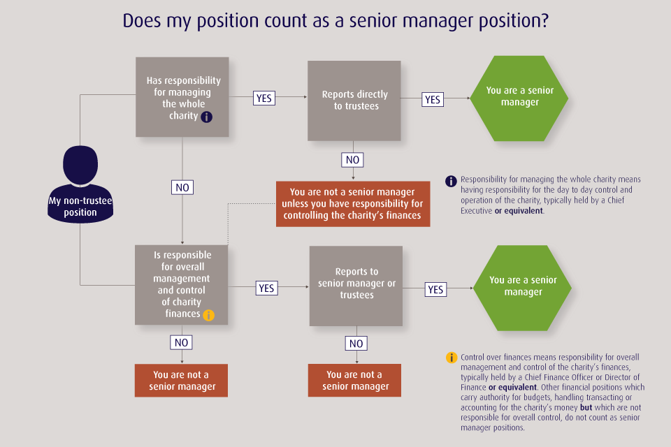 Senior manager position visual