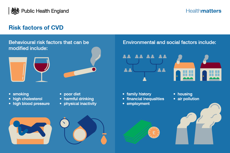 Infographic showing risk factors for CVD