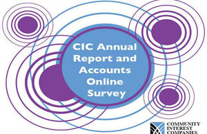 CIC Survey