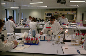 Hands-on laboratory practice