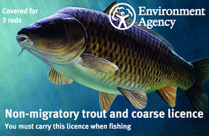 new fishing licence image - 3 rod non migratory and coarse