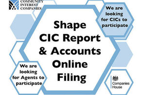 Online for CIC user testing