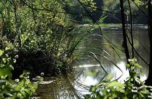 The Water Environment Grant scheme will help improve the English water environment
