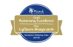 Gold award badge from Mind