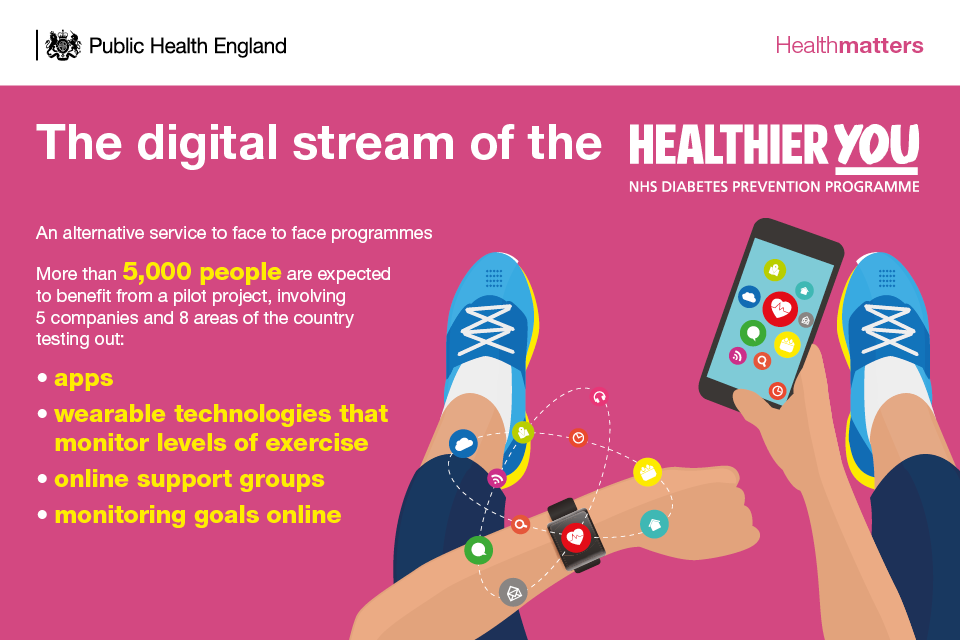 Infographic describing the digital stream of the NHS Diabetes Prevention Programme