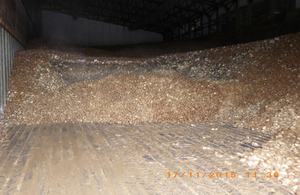 Rotting potato pile in warehouse