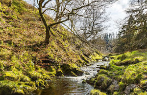 The River Goyt