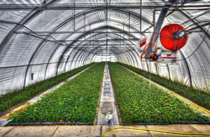 Photo Of Plants Growing In A Greenhouse Owners Plant Nurseries