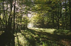 Photo credit: Natural England