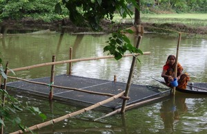 Aquaculture in the Ganges, another area of CPWF research. Picture: CPWF