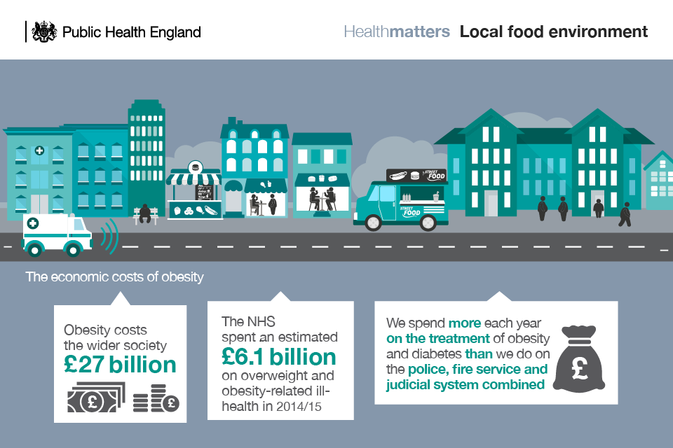 Infographic showing the economic costs of obesity