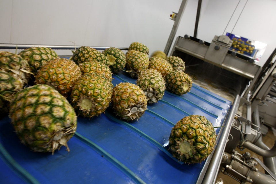 Cleaning pineapples at Blue Skies factory, Ghana