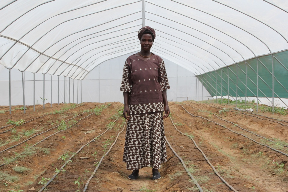 A woman pictured in a greenhouse, Turkana, northern Kenya