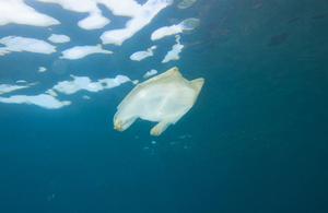 A plastic bag in the ocean