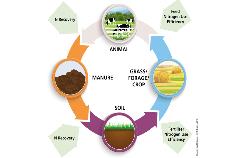 Figure 2: The nutrient loop. Nitrogen needs to be preserved at each stage of the farming process.