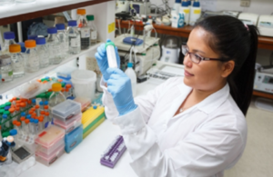 Newton-Paulet Fund: Call for collaborative research proposals in Peru