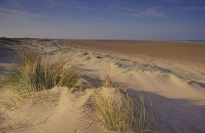 sand dune at Saltfleetby in Lincolnshire