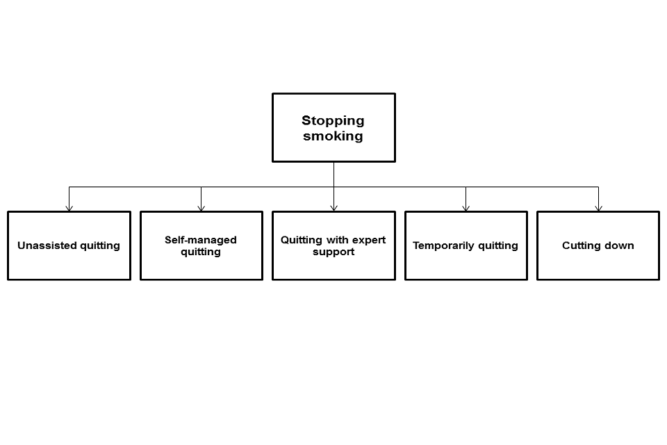 The different available options for stopping smoking.