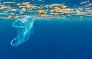 Plastic carrier bag floating in the sea