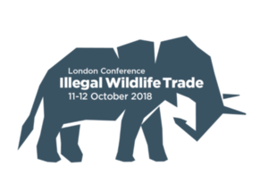 IWT conference logo