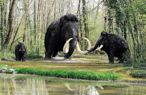 woolly mammoth found alive