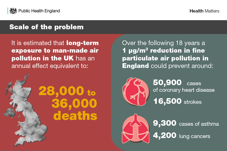 Infographic on the scale of the problem with air pollution