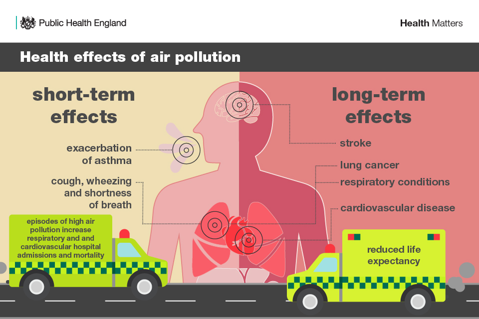 Infographic on health effects of air pollution