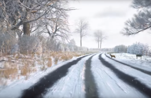 An image of a hazard perception test, featuring a road covered in snow, with a deer about the walk onto the road