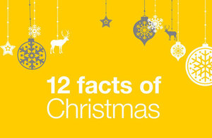 12 facts of Christmas title against a yellow background with Christmas tree decorations.