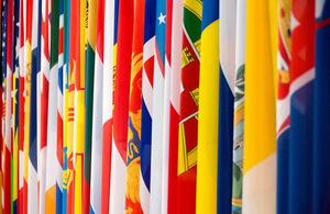OSCE flags