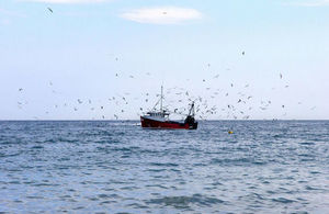Fishing industry encouraged to get ready for EU catch certificates