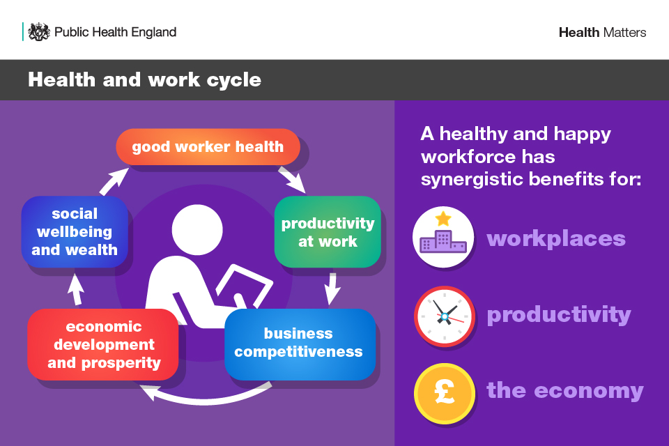 Infographic illustrating the 5 stages of the health and work cycle and the benefits of a healthy and happy workforce.