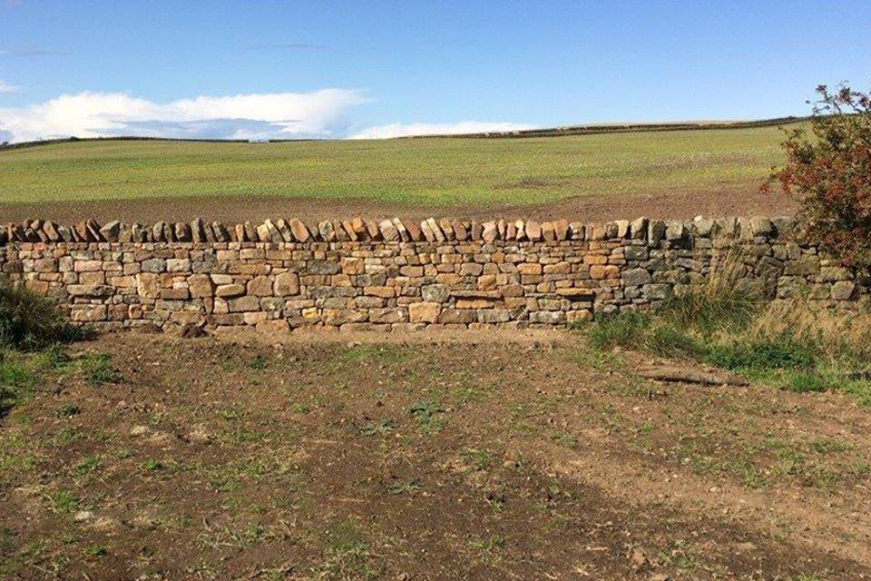 Newly installed dry stone wall at the site