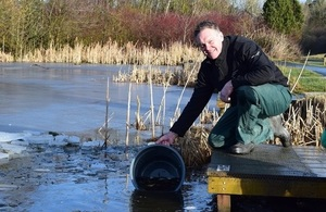 Image shows Paul Frear releasing fish into Greencroft Pond