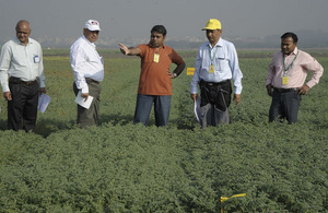 Rajeev (centre) explaining the importance of genome-enabled breeding in chickpea improvement at ICRISAT, India. L–R: SK Chaturvedi, Head of Crop Improvement, Indian Institute of Pulses Research (IIPR); NP Singh, Coordinator- All India Coordinated Research