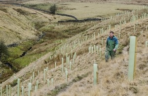 Image shows a previous Woodland for Water tree planting scheme