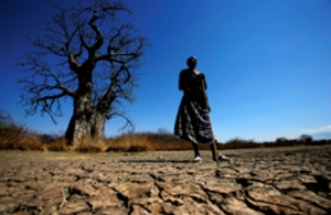 Maasai standing on cracked earth in front of Baobab tree