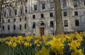 Daffodils in front of Her Majesty's Treasury