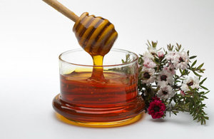 Honey and manuka flowers