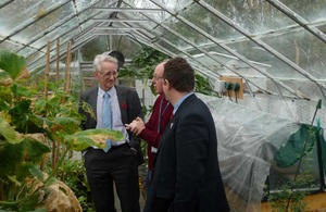 Andrew Stunell in a greenhouse