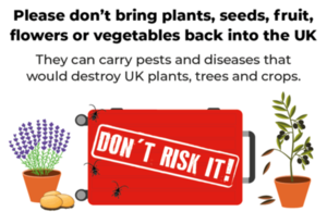 Don't Risk It campaign image with a suitcase, lavender, olive tree and potatoes