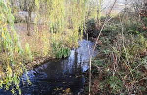 Photo of Longton Brook