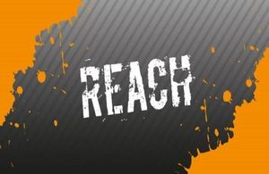 Compass REACH team logo