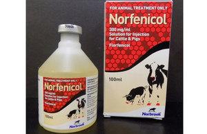 Norfenicol