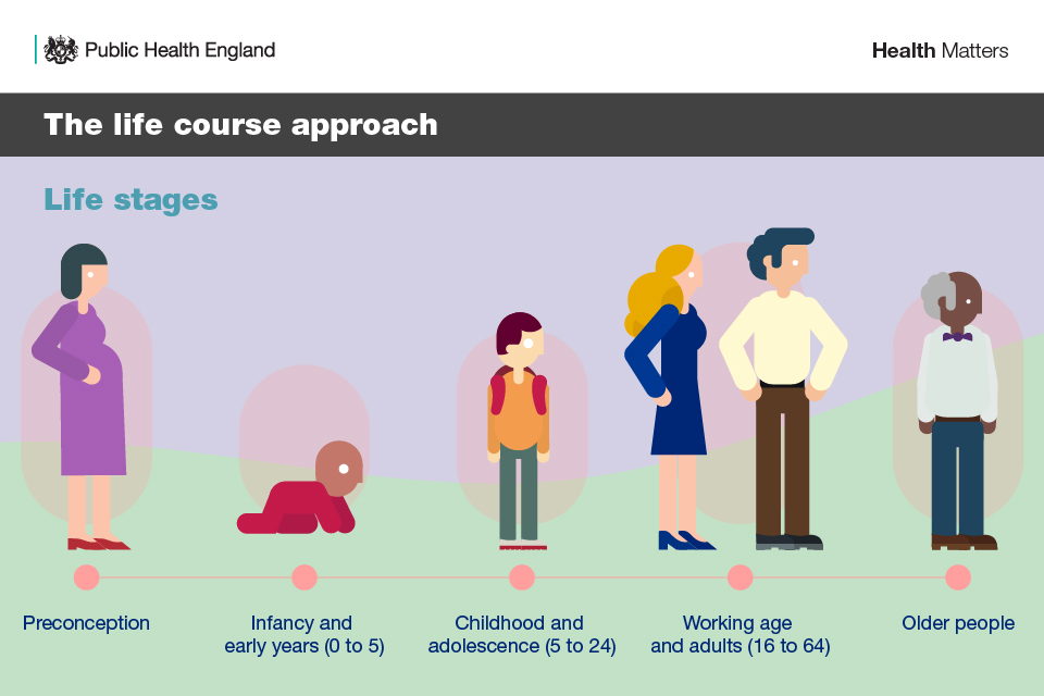 Infographic showing the life stages of the life course: preconception; early years; childhood and adolescence;working age; older people;