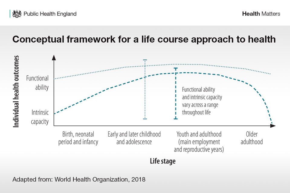 Graph showing conceptual framework for a life course approach. Illustrates how functional ability and intrinsic capacity vary overt he stages of life