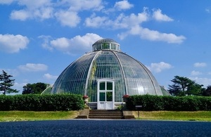 A picture of a glasshouse at Kew botanic gardens surrounded by greenery against a blue sky.