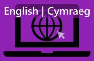 Apply for basic checks online, in Welsh