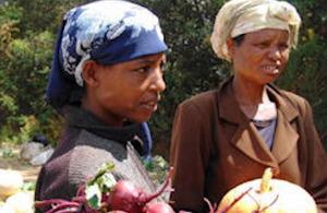 IFPRI puts agriculture back on the political agenda.